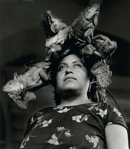 """This Artwork Changed My Life: Graciela Iturbide's """"Nuestra Señora de Las Iguanas"""""""