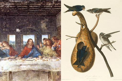 9 Artists Who Made Contributions to Science—from Leonardo da Vinci to Samuel Morse