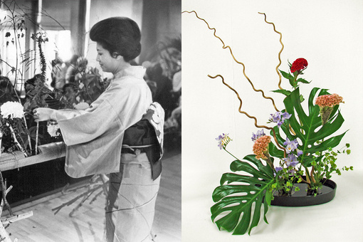 The Thriving Art of Ikebana, the Japanese Tradition of Flower Arranging