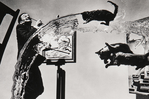 The Story behind the Surreal Photograph of Salvador Dalí and Three Flying Cats
