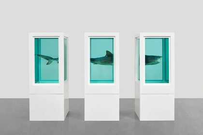 Damien Hirst: Visual Candy and Natural History