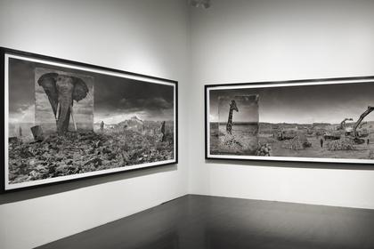 Nick Brandt - Inherit the Dust