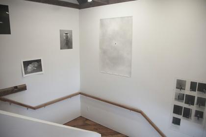 Sophia Hamann - Studies