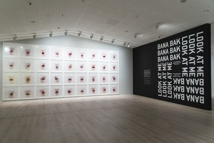 """Look At Me!  - Portraits and Other Fictions from the """"la Caixa"""" Contemporary Art Collection"""
