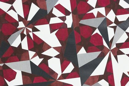 ADRIANA CZERNIN: Fragment