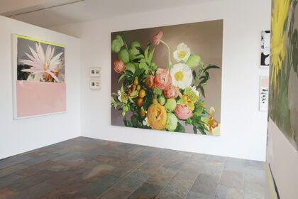 RAWsalt | Michael Harnish | THE FLOWER POLAROIDS