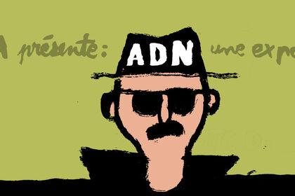 A.D.N