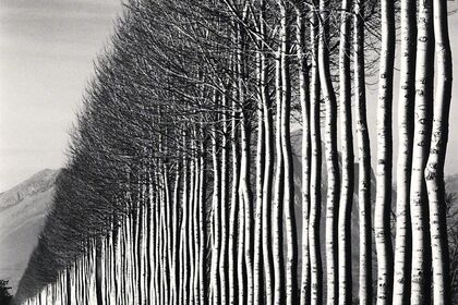 MICHAEL KENNA - Abruzzo + New Photographs