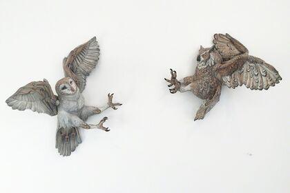 Malia Landis & Wesley T. Wright: Natural Paradox