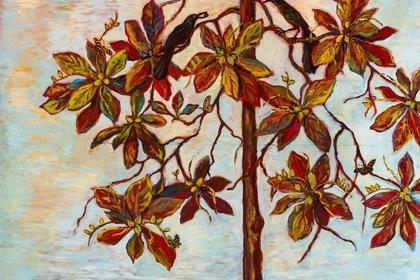 Kim Osgood: Seeing Stillness