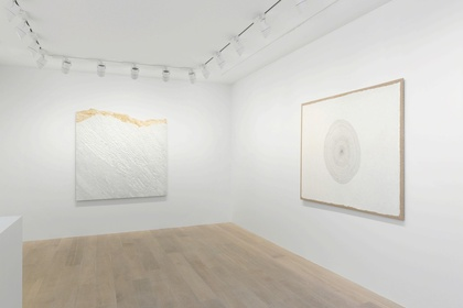 Giuseppe Penone: Selected Works
