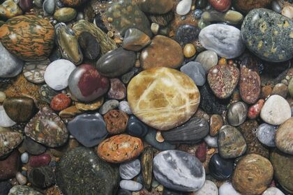 Arts for the Earth: Painting, Writing, Singing to benefit Conservation Trust