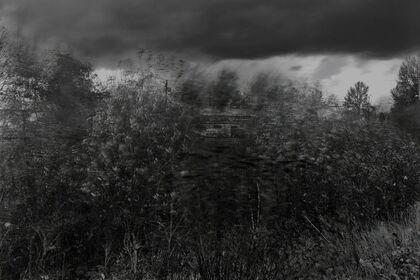 The Black & White Photo Show