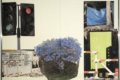 Project Gallery: Robert Rauschenberg