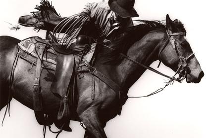 Michael Crouser | Mountain Ranch