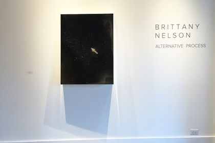 Brittany Nelson: Alternative Process