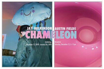 Chameleon: Jay Wilkinson & Austin Fields