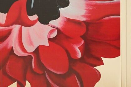Scheltens & Abbenes - 'The Workers'