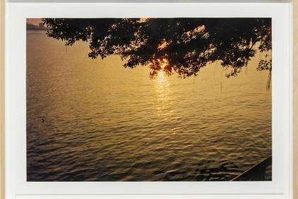 The Sunset of Last Summer