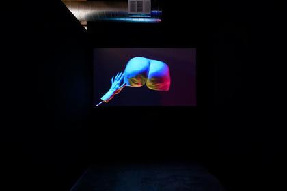 Julie Weitz 'The Hand Network, HUMDOG a prelude'