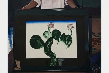 Becca Mann: Protea