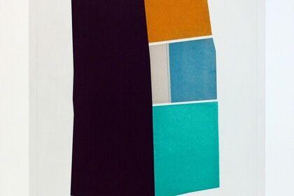 Suzanne Caporael: Prints