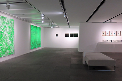 Xiao Bo solo exhibition