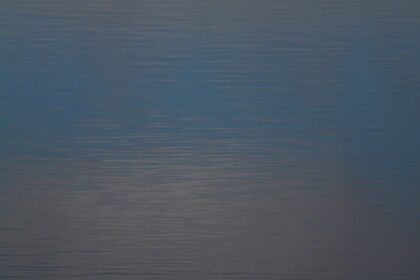 John McCluskey - Arist Spotlight Solo Art Exhibition