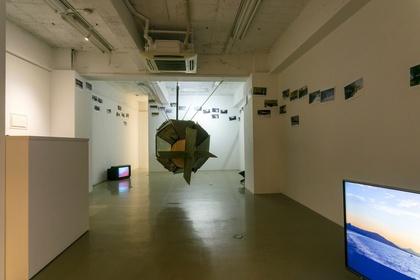 "Haruko Sasakawa ""Recollection: the Plywood Fish"""