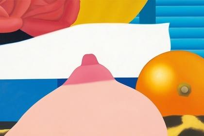 Tom Wesselmann: Bedroom Paintings