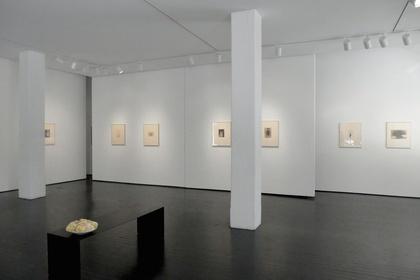 Tori, Masao Yamamoto