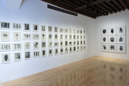 Structures of Identity: Photography from the Walther Collection