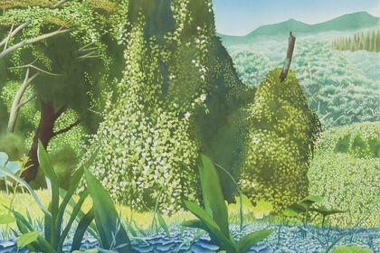 Ben Norris: Botanical Oasis
