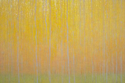 Inward: David Grossmann Solo Exhibition