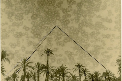 The Pyramids And The Palm Trees Test by Bruno V. Roels