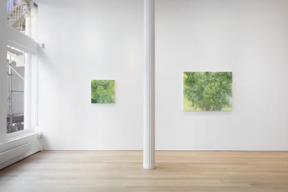 Sylvia Plimack Mangold: Summer and Winter
