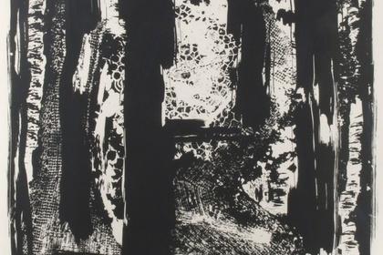 Noir: An Exploration. Monochromatic works in Black & White
