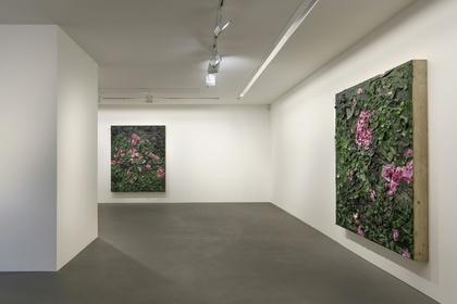 Julian Schnabel: 6 Rose Paintings