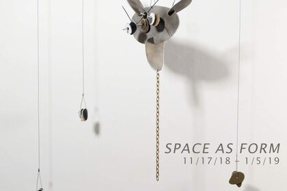 Space as Form: Carolina Sardi