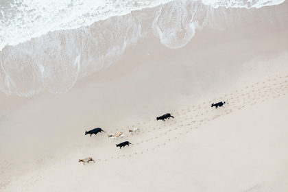 Zack Seckler | South Africa