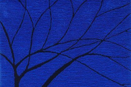 Sarah Walker : Tree Drawings on the Sky