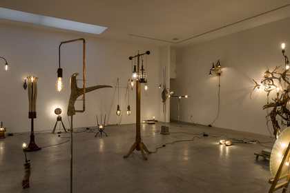 Light Traps - Bo Christian Larsson