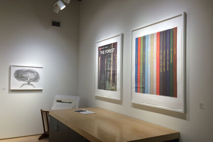 Recent Editions: Jay Heikes, Do Ho Suh & Mungo Thomson