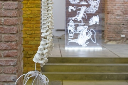 Romana Drdová: Writing Without Bones