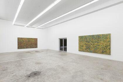 Patrick Rohner «Entanglement»