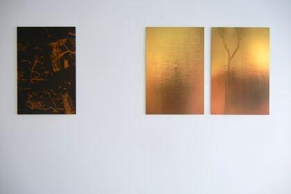 Trees De Mits 'KIN & KURO'