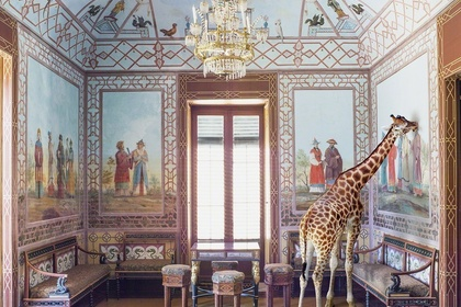 Karen Knorr: Europe and India