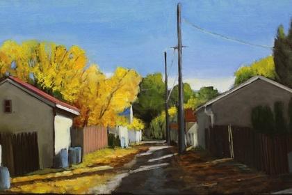 Kari Duke - Edmonton Alleys