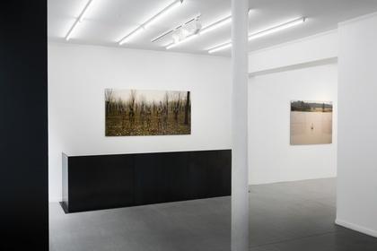 Liu Bolin, Revealing Disappearance