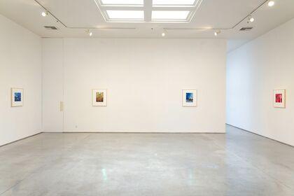 Sharon Ellis: Blue Hour